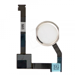 iPad Air 2 Home Button With Flex in White (Biometrics May Not Work)  5501303733797