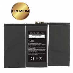 iPad 2 Replacement Battery - 5501303143251